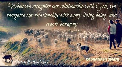 Radhanath Swami quote on creating harmony