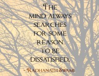 Radhanath Swami's quote on mind always searches