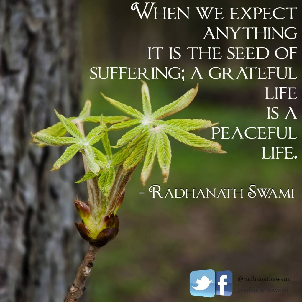Radhanath Swami on seed of suffering