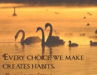 Radhanath Swami on choice