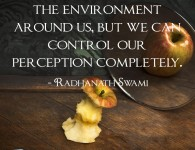 Radhanath Swami on Controlling perception