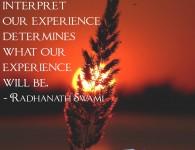 Radhanath Swami on Experience