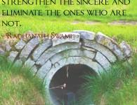 Radhanath Swami on impediments