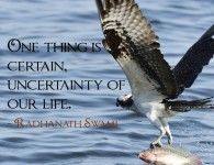 Radhanath Swami on uncertainty of life